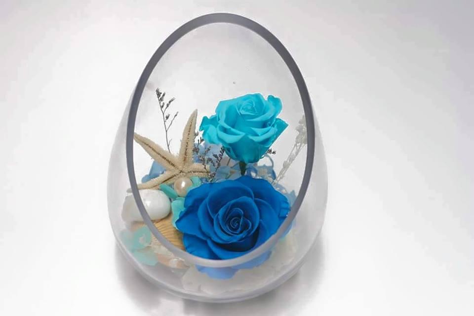 lọ xéo hoa hồng xanh bất tử
