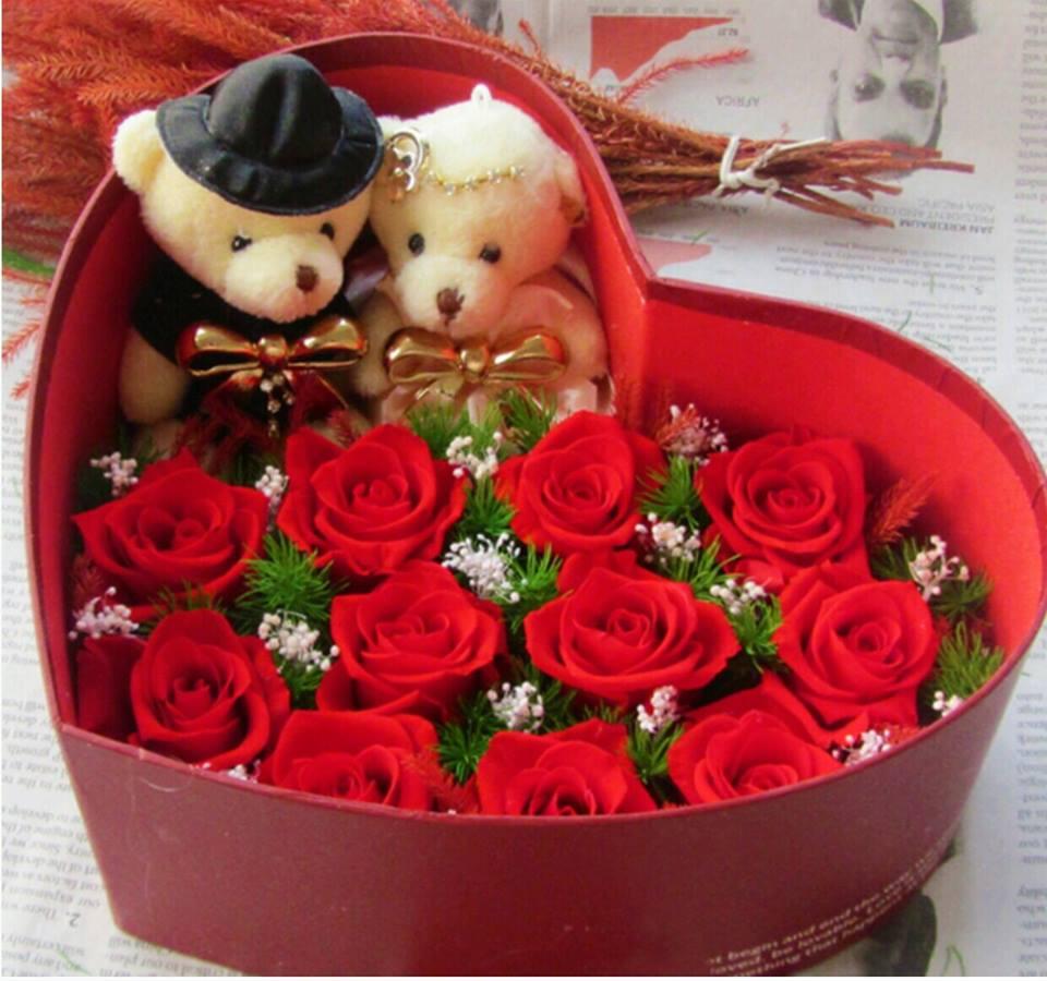 hoa hồng bất tử hộp tim